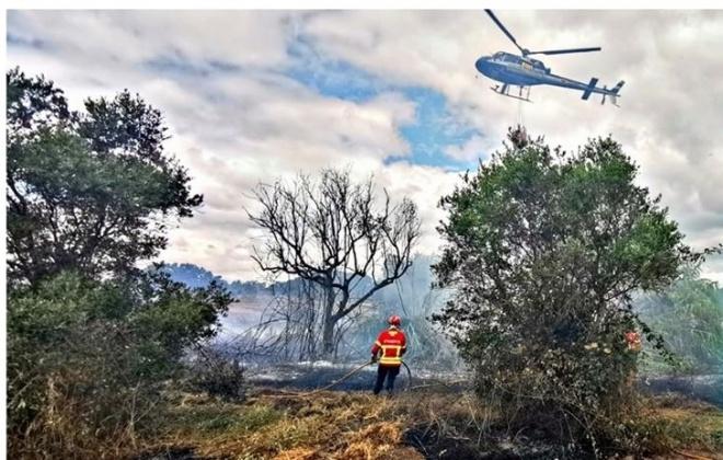 Incêndio consumiu área de mato em Alcácer do Sal