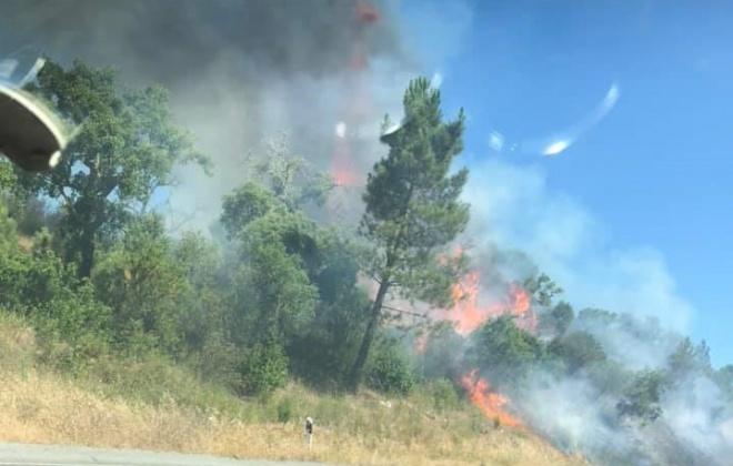 Bombeiros combateram incêndio na serra de Grândola