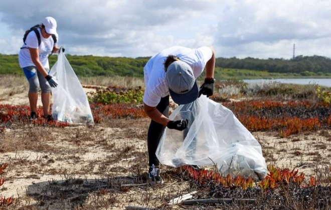 Município de Sines realizou ação de limpeza de praia