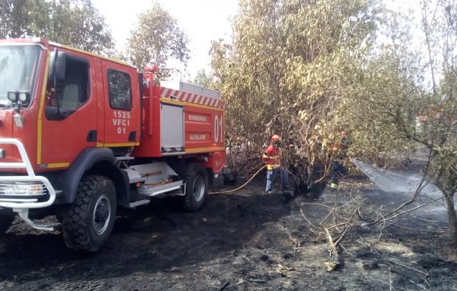 Bombeiros combateram incêndio em Ferreira do Alentejo