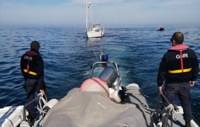 Veleiro foi ontem abalroado por duas orcas ao largo de Sines