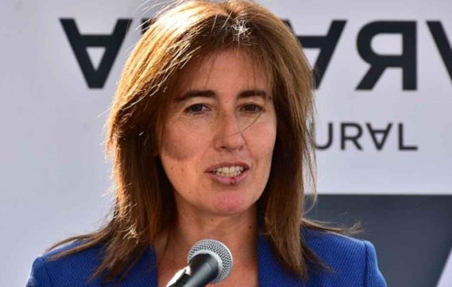 Covid-19: Quase 40% dos pedidos de 'lay-off' foram rejeitados - ministra do Trabalho