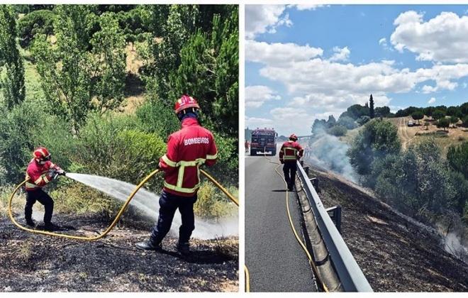 Incêndio consumiu pasto e mato junto da A2 em Alcácer do Sal