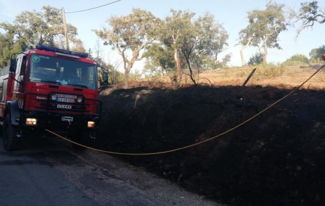 Incêndios consumiram área de mato e seara em São Luís
