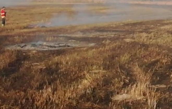 Incêndio consumiu área de pasto e mato perto de Vila Nova de Milfontes