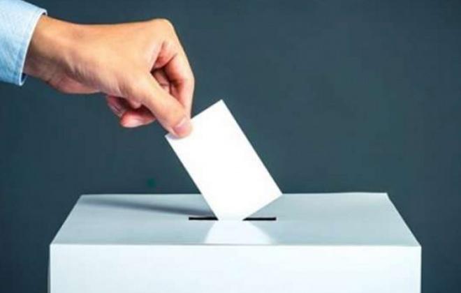 Provedora pede inconstitucionalidade da lei da eleição dos órgãos autárquicos